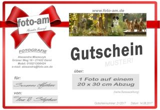 99_GUTSCHEIN_Hundeshoot._20x30 Bild-druck
