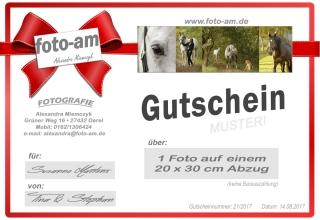 99_GUTSCHEIN_Pferdeshoot._20x30 Bild_Freizeit-druck